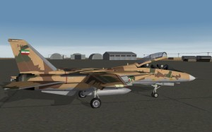 F-14A Tomcat in Splinter Camo